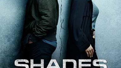 Shades of Blue Season 3 The Last Episode