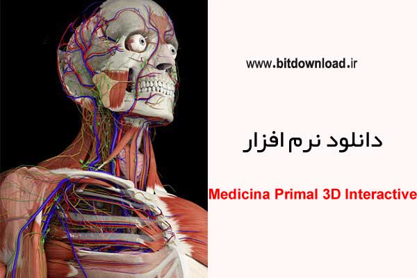 The most impressive 3-D human anatomy software called