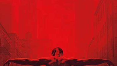 The Diabloan Serial - The Daredevil Season 3 The Last Episode