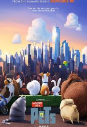 Download the animated film The Secret Life of Pets 2016
