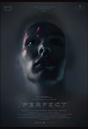Download Perfect 2018 movie