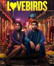 Download The Lovebirds 2020 movie